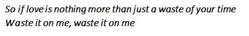 "Lyrics of ""Waste It On Me"" by Steve Aoki and BTS"