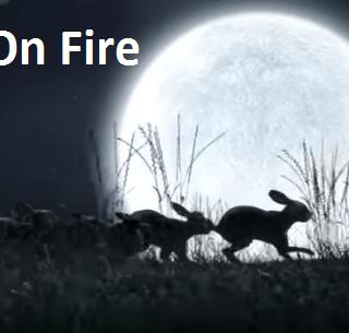 Fire on Fire