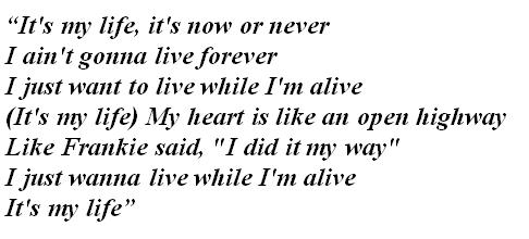 "Lyrics of ""It's My Life"""