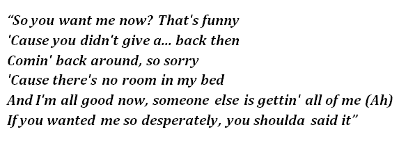 "Lyrics of ""Should've Said It"""