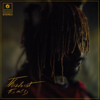 Fair Chance by Thundercat (ft. Ty Dolla $ign & Lil B)