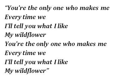 Lyrics of Wildflower