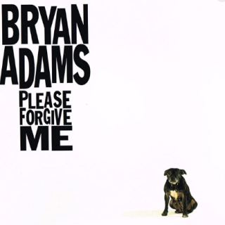 Please Forgive Me by Bryan Adams
