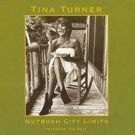 Nutbush City Limits by Tina Turner