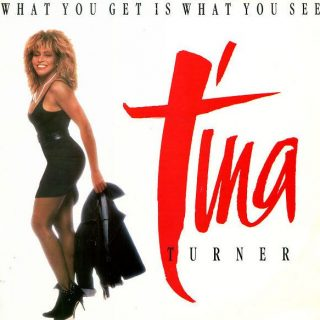 What You Get Is What You See by Tina Turner