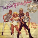 Land of Make Believe by Bucks Fizz