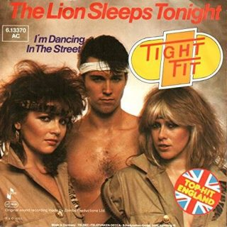 The Lion Sleeps Tonight by Tight Fit