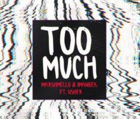 Too Much by Marshmello & Imanbek (ft. Usher)