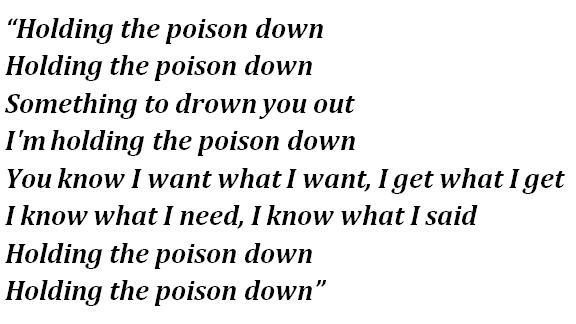 "Lyrics of Foo Fighters' ""Holding Poison"""